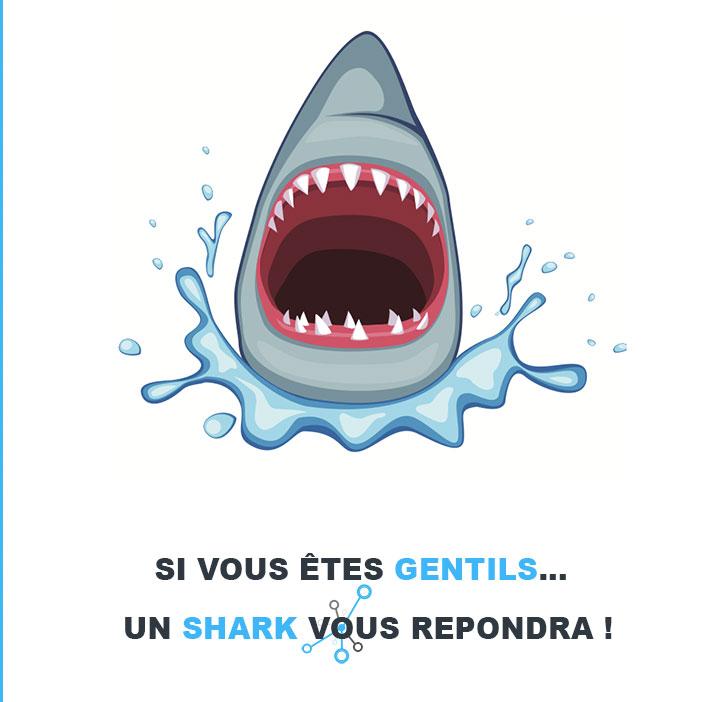 Un shark vous répondra