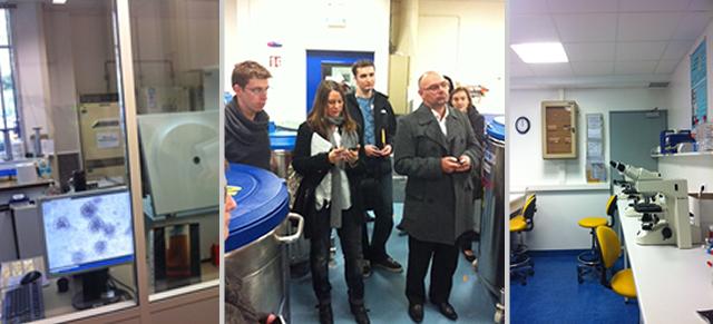 Visite des laboratoires de l'AFM Téléthon