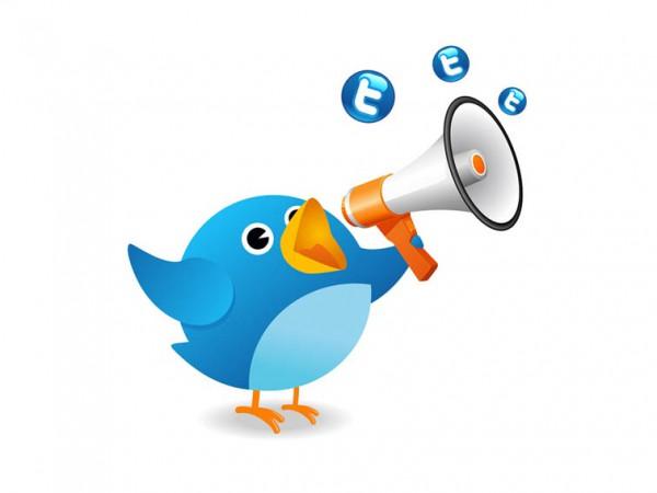 ance sponsorisée sur Twitter